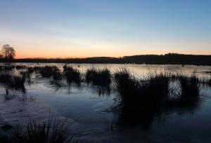 Før solpgang ved søen
