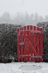 Havelåge i snevejr