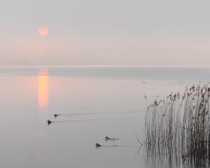 Solnedgang Brabrand Sø